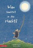 Jonathan Emmet: Was leuchtet in der Nacht?