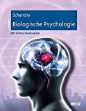 Rainer Schandry: Biologische Psychologie
