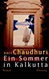 Amit Chaudhuri: Ein Sommer in Kalkutta